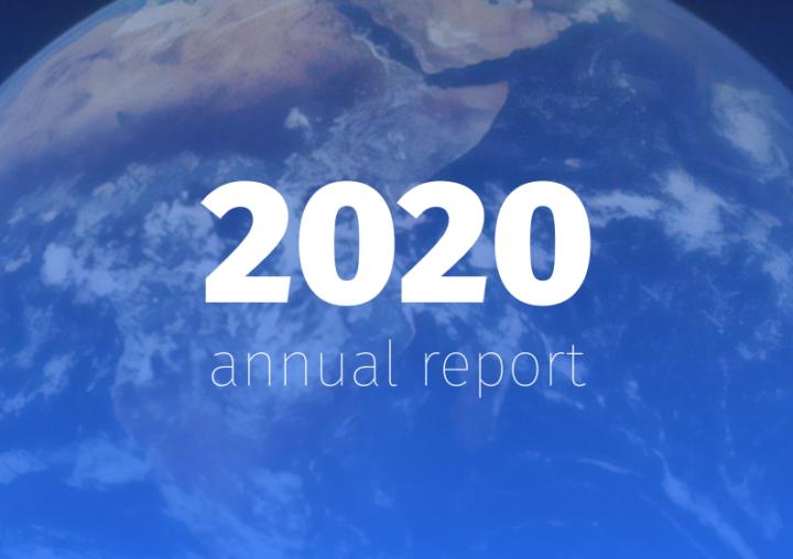 DD Foundation Annual Report 2020